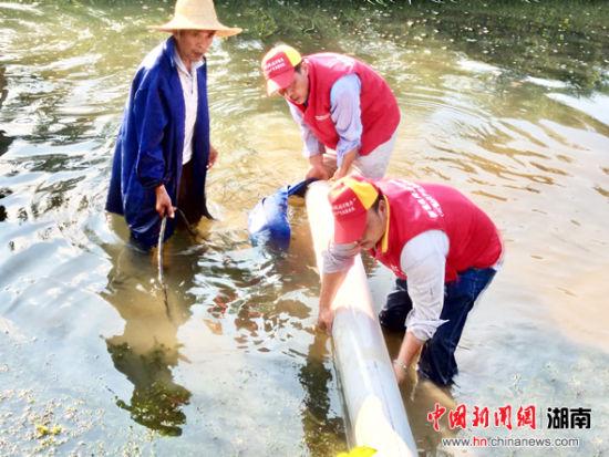国网衡山县供电公司员工在东湖镇石潭村安装抗旱抽水装置。 胡志超 摄