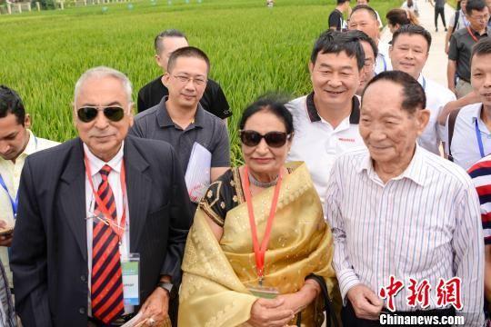 来自海外的稻作专家与袁隆平合影。 唐小晴 摄