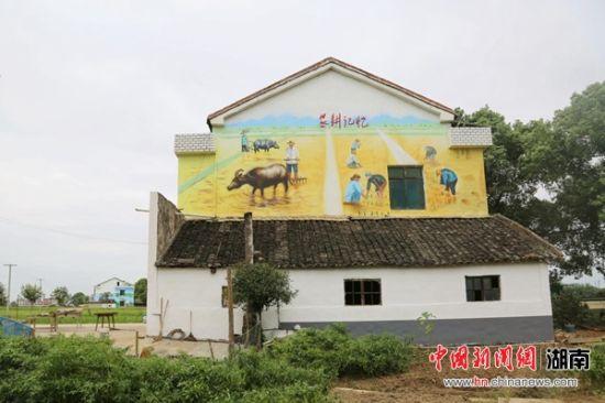 张家塞乡乌龙堤村民居外墙秀彩绘。