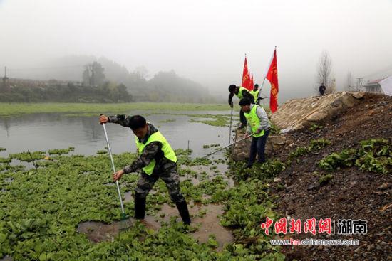志愿者打捞水白菜和水葫芦
