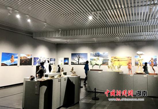 展览共展出228名作者的679件作品。