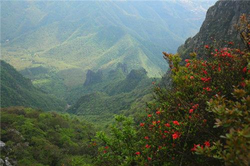 图为:湖南舜皇山国度级天然维护区风景