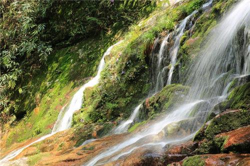 图为:湖南舜皇山国度级天然维护区一隅