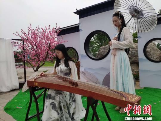 古筝表演。 王昊昊 摄