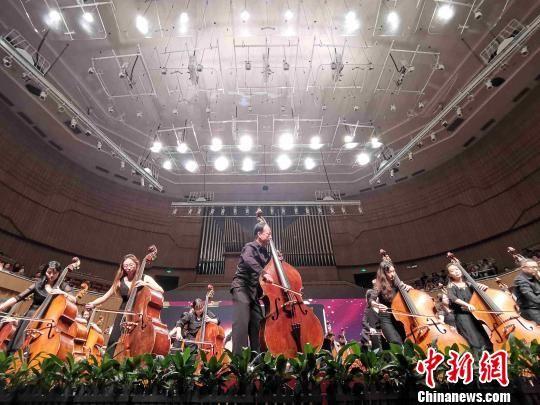 杨振安与先生用70把高音提琴一同奏响《我和我的故国》。 付敬懿 摄