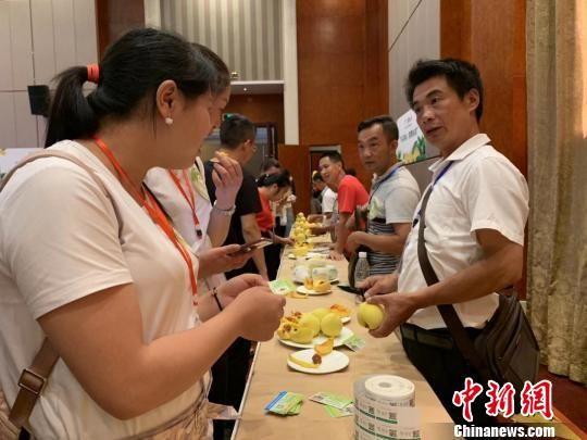 日前在当地举行的产销对接会上,桂东农户向采购商介绍农产品。 鲁毅 摄