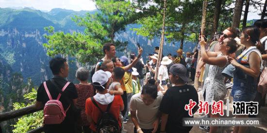 游客在天子山景区游览。