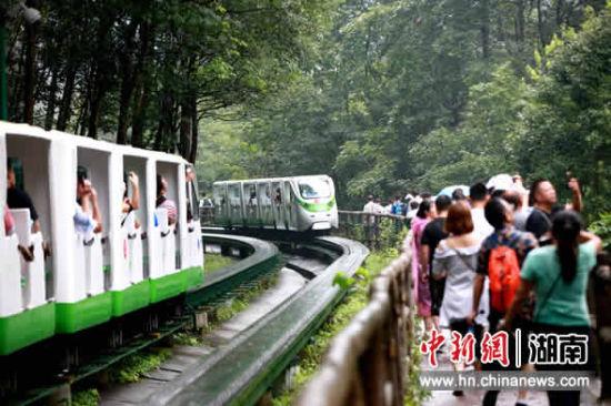 游客乘观光电车在十里画廊游览。