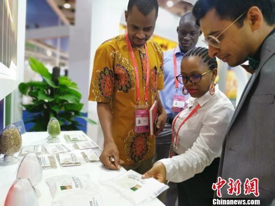 非洲媒体团参观首届中非经贸博览会展馆。 刘双双 摄