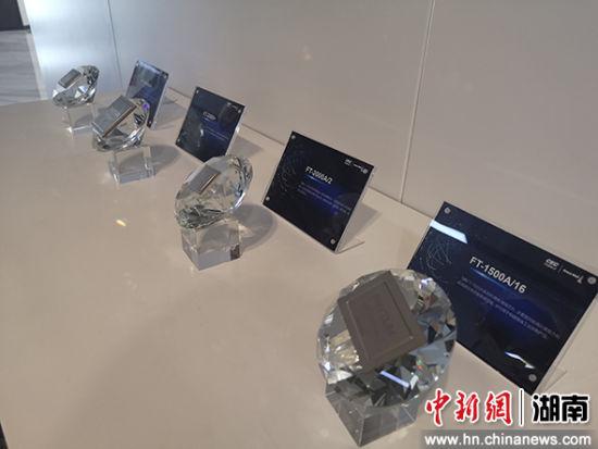 中国长城科技团体株式会社的飞扬芯片。