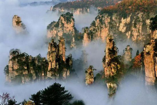 图片来源:张家界政府官网