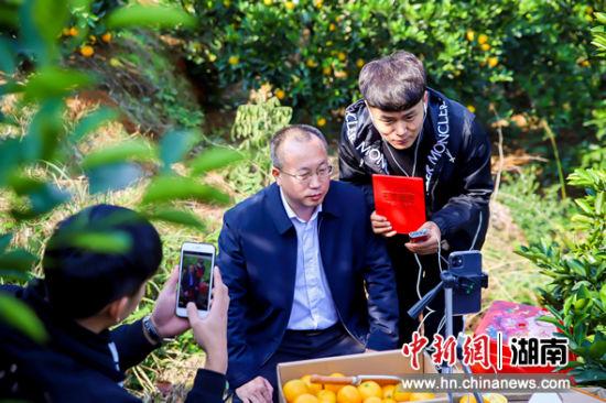永兴县人民政府副县长刘振华推荐冰糖橙。