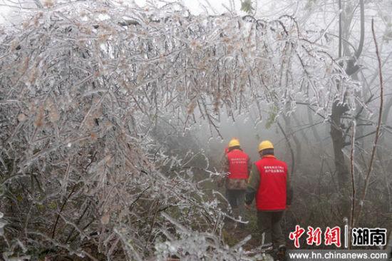 供电所员工开展冰雪后特巡。