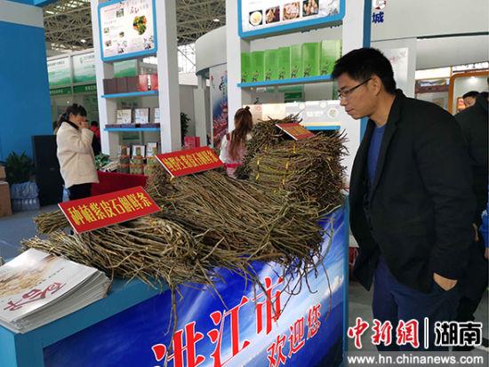 2019武陵山(怀化)国际健康产业博览会展出多种中药材。