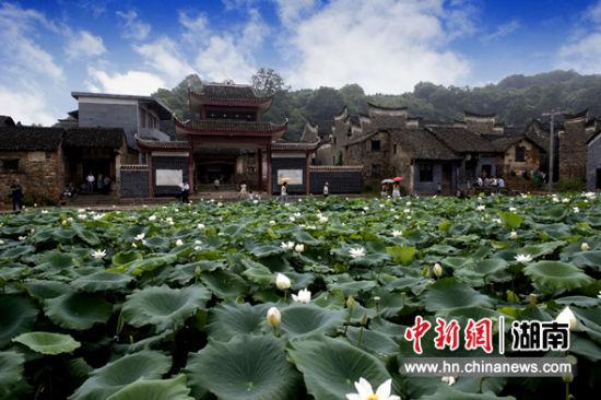 http://www.jjetgj.live/chalingluntan/206299.html