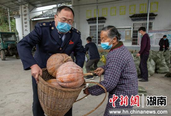 张家界市税务局:接力帮扶村20吨蔬菜驰援湖北