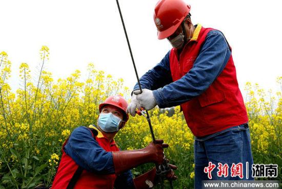 国网衡阳供电公司珠晖分公司员工在茶山坳镇堰头村巡检配电线路。