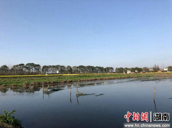 大通湖细密团结高尺度农田和瑰丽村子建树。