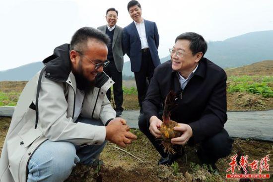 杜家毫在湘西州调研脱贫攻坚工作时强调 一鼓作气 尽锐出战 坚决夺取疫情防控和脱贫攻坚双胜利