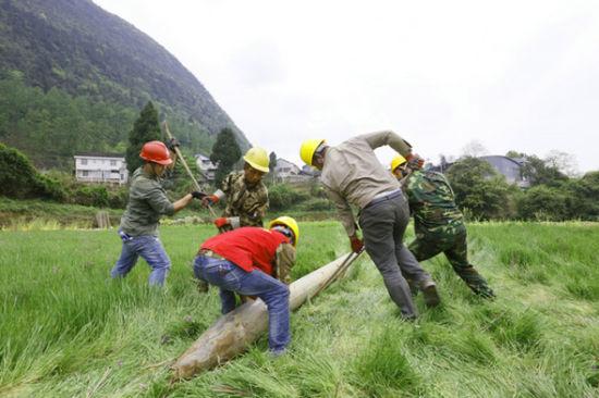 国网湘西供电公司员工正在配网改造战役中准备立杆。