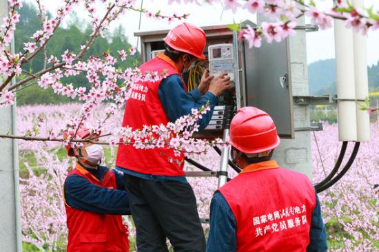 桃花林里检修忙。