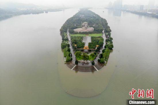 橘子洲景区亲水平台被淹没。 杨华峰 摄