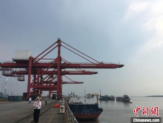 岳阳城陵矶港,该港口至东盟、澳大利亚海上接力航线已实现常态运营。 鲁毅 摄