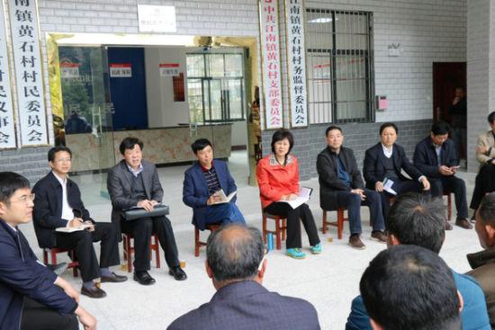 2017年4月,湖南省委常委、统战部部长黄兰香(左五)在安化县黄石村调研。湖南省委统战部供图