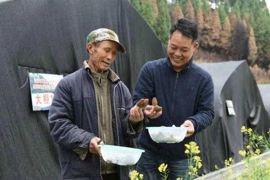 省文联驻且已村第一书记肖双良带村民发展羊肚菌产业。