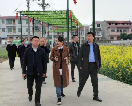 县委副书记向汝莲(中)调研脱贫攻坚工作。