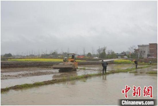 湖南东安激励粮食生产 发展种粮大户1670户