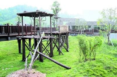 熊猫馆旁供熊猫攀爬玩耍的木质设施