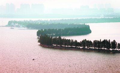 地址:武汉市武昌区东郊   特色魅点:东湖一年四季风情万种,秋来桂