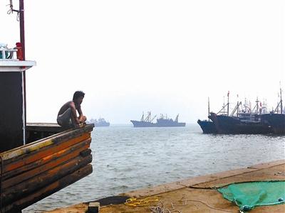 """渤海撞船""""杀人""""事件调查:渔民因抢地盘引斗殴"""