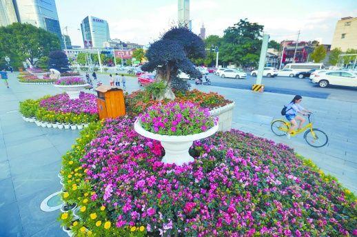 花团锦簇 喜迎国庆