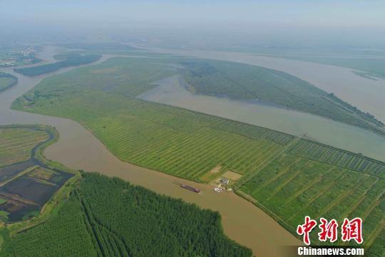 """西洞庭湖恢复退化湿地八万亩 """"落霞与孤鹜齐飞""""将再现"""