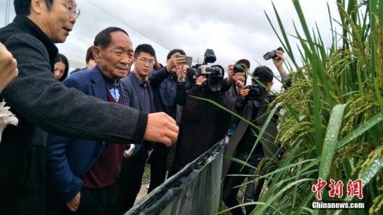 """袁隆平谈""""兴安盟大米"""":中国稻米的国际目标"""
