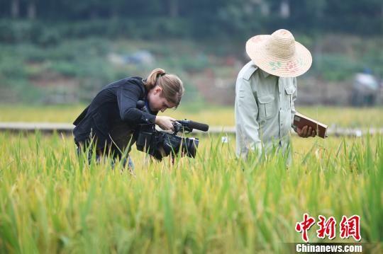 德媒记者结束五天最新白菜网送彩金之行 携湖湘人文风情而归