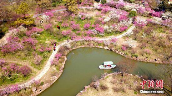 扬州春暖花开 民众赏梅踏春