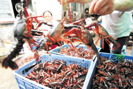 小龙虾是非多 但长沙销售未受影响